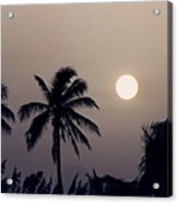Floridian Sunrise Acrylic Print