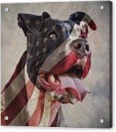 Flag Dog Acrylic Print