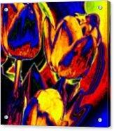 Flamboyant Tulips Acrylic Print