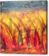Flames Inferno Acrylic Print
