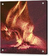 Flaming Gargoyle Acrylic Print