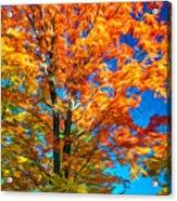Flaming Maple - Paint Acrylic Print