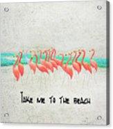 Flamingo Art II Acrylic Print