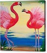 Flamingo Courtship Dance Acrylic Print