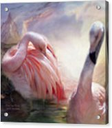 Flamingo Dawn Acrylic Print