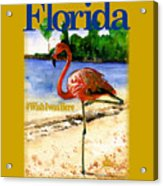 Flamingo In Florida Shirt Acrylic Print