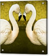 Flamingo Reflection Acrylic Print