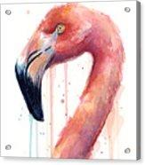 Flamingo Watercolor Illustration Acrylic Print