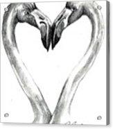 Flamingos In Love Acrylic Print