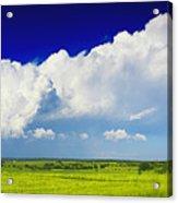Flat Open Grassland And Sky Acrylic Print
