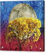 Flavo Luna In Ligno Acrylic Print