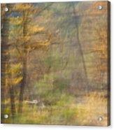 Fleeting Autumn Acrylic Print