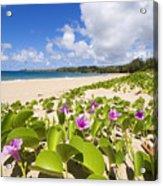 Fleming Beach Acrylic Print