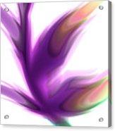 Fleur De Lumiere 02 Acrylic Print