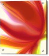 Fleur De Lumiere 05 Acrylic Print