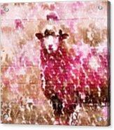 Fleur De Sheep Acrylic Print