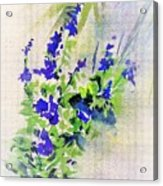 Fleurs Acrylic Print