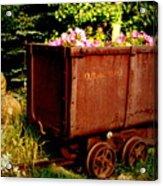 Fleurs In Rustic Ore Car Acrylic Print