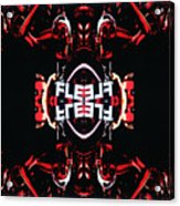 Flexcam 5 Acrylic Print