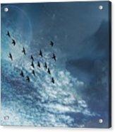 Flight Of Dreams Acrylic Print