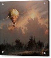 Flight Of The Swan 3 Acrylic Print