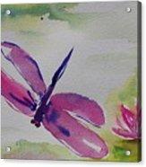 Float Like A Dragonfly Acrylic Print