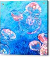 Float Acrylic Print