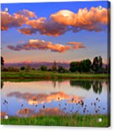 Floating Clouds And Reflections Acrylic Print