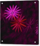 Floating Floral - 006 Acrylic Print