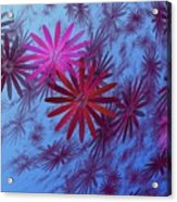 Floating Floral -003 Acrylic Print