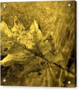 Floating Foliage Acrylic Print by Ed Smith