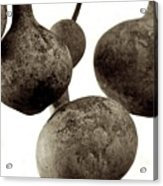 Floating Gourds Acrylic Print