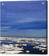 Floating Ice Acrylic Print