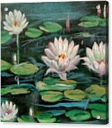 Floating Lillies Acrylic Print