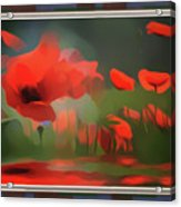 Floating Wild Red Poppies Acrylic Print