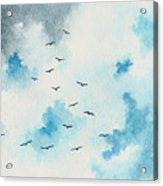 Flock Of Birds Acrylic Print