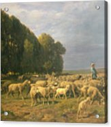 Flock Of Sheep In A Landscape Acrylic Print by Charles Emile Jacque