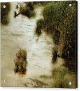 Flood Tide In The Salt Marsh Acrylic Print