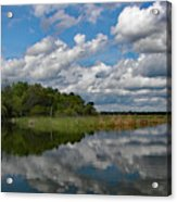 Flooded Low Country Rice Field Acrylic Print