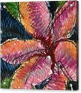 Flora Exotica 3 Acrylic Print
