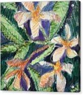 Flora Exotica Acrylic Print