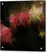 Flora Feathers Acrylic Print