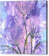 Flora Haze Acrylic Print