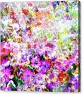 Floral Art Clvi Acrylic Print