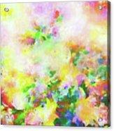 Floral Art Clxiv Acrylic Print