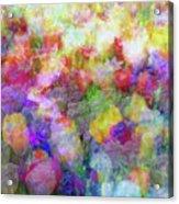 Floral Art Cxi Acrylic Print