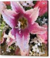 Floral Beauty Acrylic Print