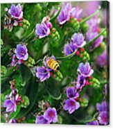 Floral Beehive Acrylic Print