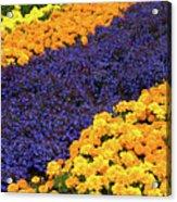 Floral Carpet Acrylic Print