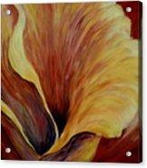 Floral Close Up Acrylic Print